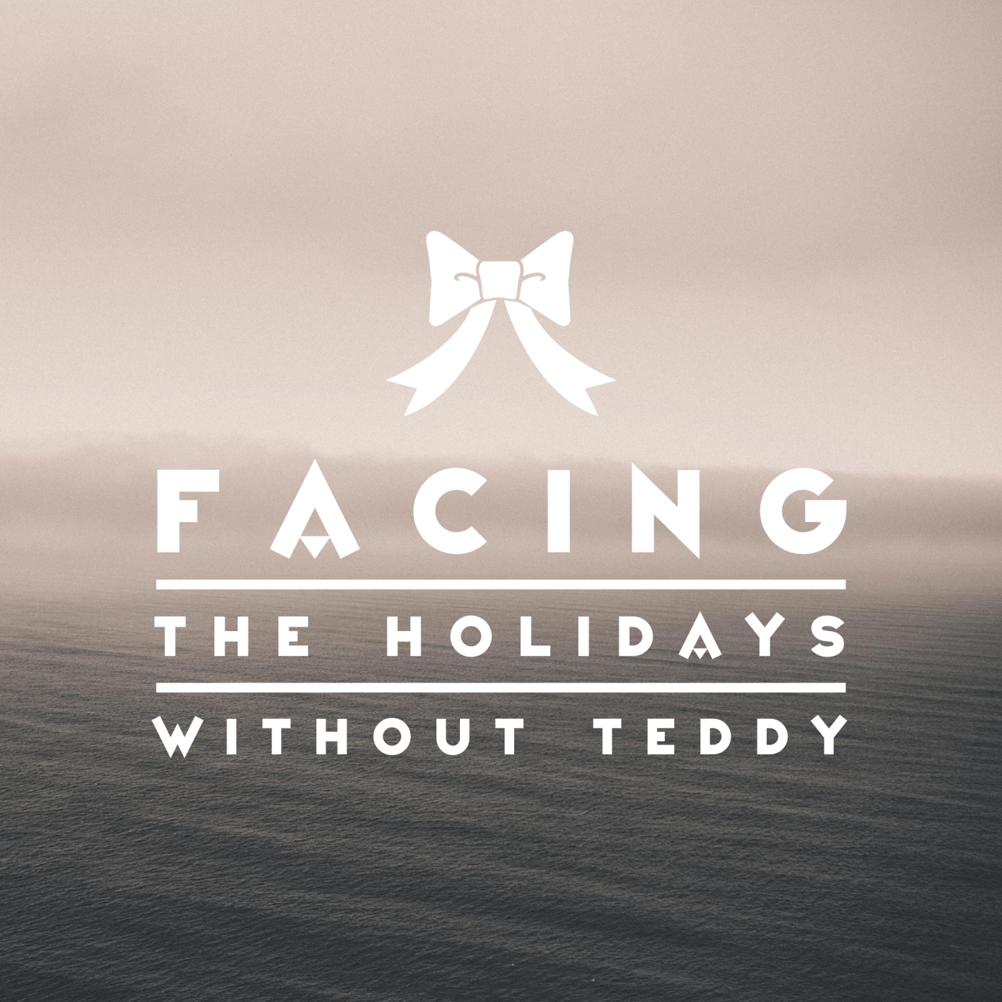 Facing the Holidays without Teddy
